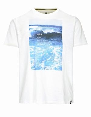 Sea Organic cotton logo